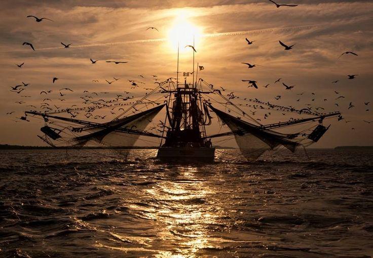 Un día largo,en Carolina del Sur,pescando camarones....(barco camaronero)