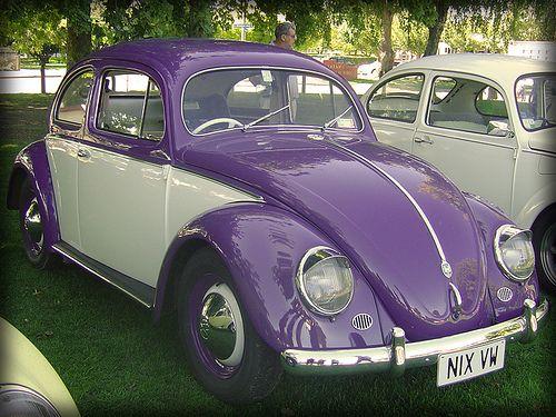 1956 Purple Volkswagen-1200