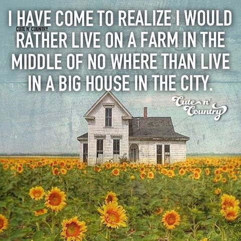 I want a big house in the county not the city