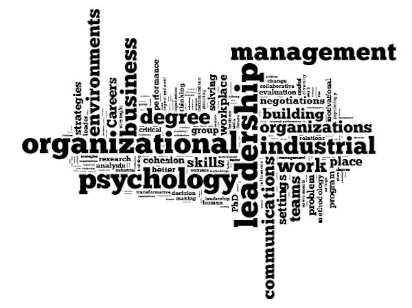 organizational psychology This master's in organizational psychology focuses on the social and  psychological processes operating in organisations drawing on current and  classic theory.