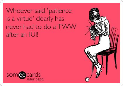 Free, Pregnancy Ecard: Whoever said 'patience is a virtue' clearly has never had to do a TWW after an IUI!