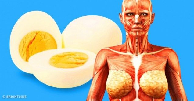 9 Things That Will Happen to Your Body if You Start Eating 2 Eggs a Day – Your Daily Page