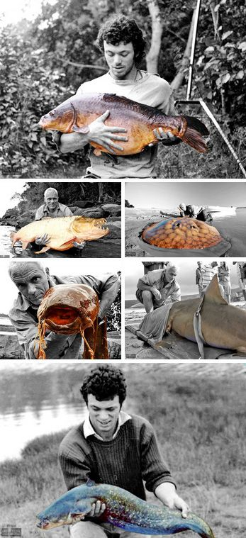 Black and White River Monsters Jeremy Wade by kressaM