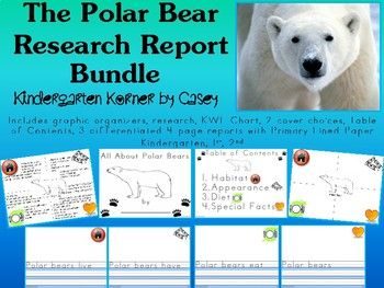This Polar Bear NO PREP Research Report Unit BUNDLE is differentiated for report writing in Kindergarten, 1st, 2nd. Package includes graphic organizers, research fast facts, KWL Chart, 2 report cover choices, Table of Contents, choice of 3 differentiated four