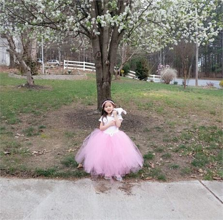 Pink Flower Girl Dress/Pink Tutu Dress/Toddler Tutu Dress/Birthday Tutu Dress/Princess Tutu Dress/Long Tutu Dress/Pink Cute Tutu Dress   -- This full length tutu dress will be custom made to fit your precious baby girl. When she wears this dress she will become the beautiful flower girl at the wedding or even the cute princess at her birthday party. Whatever the occasion she wears this dress, be assured it will be full of wonderful memories.   The upper portion o...