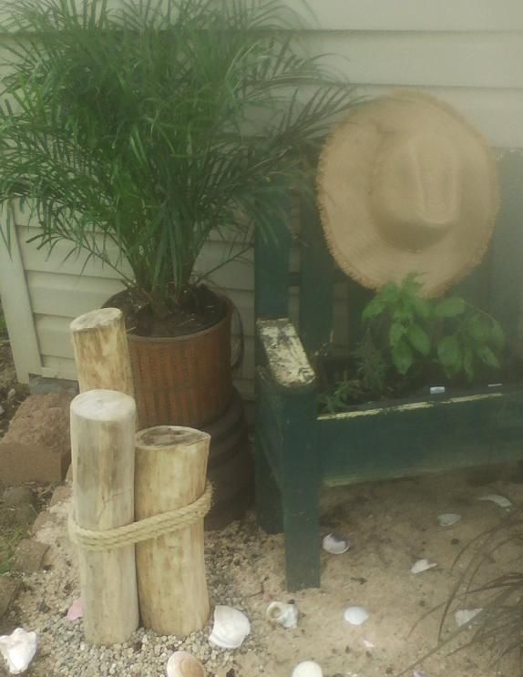 I found this old bench along a recycling bin and left it rustic looking and put a planter in it with my fresh herbs in it. Then attached a sun hat to look more like an old style beach chair. The logs with rope I made myself from some old trees that fell down in my yard last year.... some I cut and peeled the bark and sanded them down. Real shells too from some of our travels to beaches on our past vacations.
