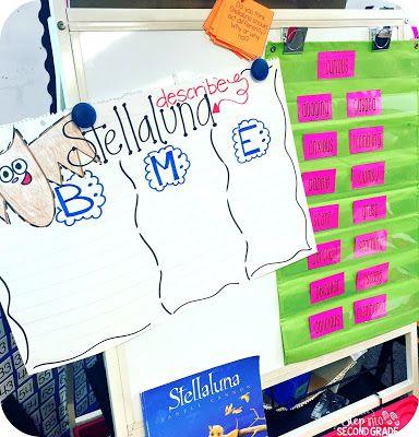 Stellaluna | Step into 2nd Grade with Mrs. Lemons | Bloglovin