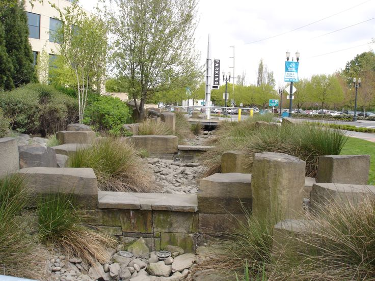 This is the rain garden at the oregon convention center for Landscape drainage design