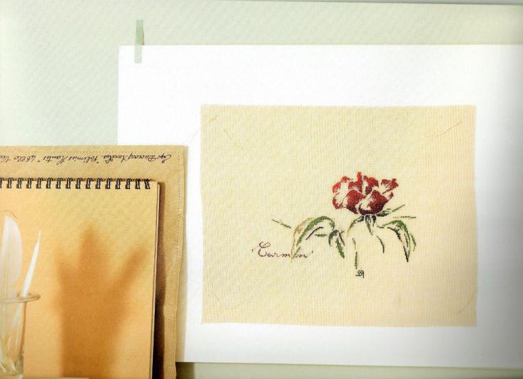 Gallery.ru / Фото #17 - Roses + бонус - rabbit17