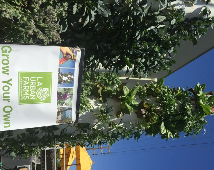 Will Vertical Gardens Save Our Food System Food System