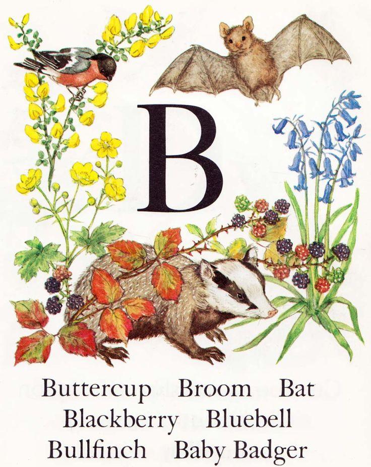 Vintage Kids' Books My Kid Loves: An Alphabet by Molly Brett