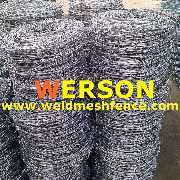 1 6mm Galvanized Barbed Wire Wire Diameter 1 6mm X 1 6mm E Mail Sales Weldmeshfence Com Barbed Wire Wire Barbs