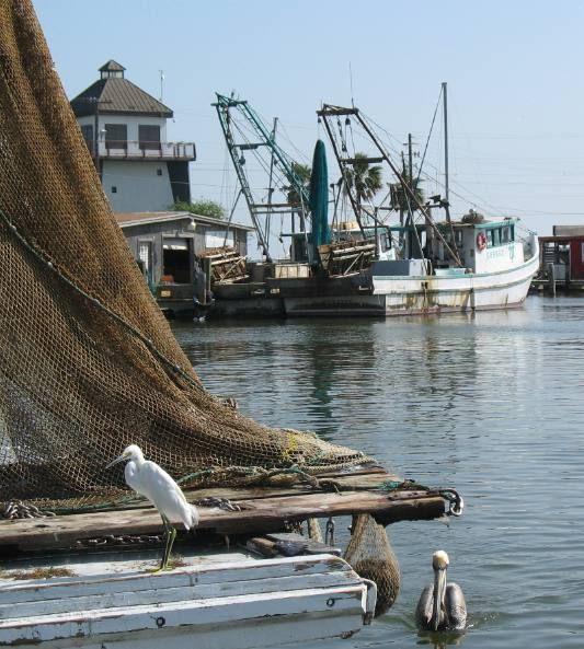 Best 25 rockport texas ideas on pinterest texas coast for Sound bound fishing