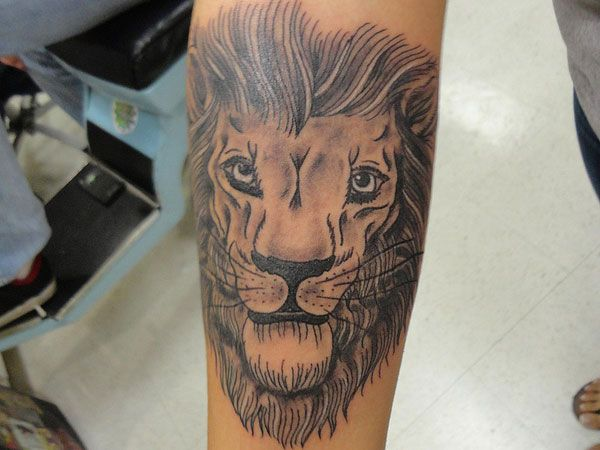 Best 25 lion hand tattoo ideas on pinterest hand for Hand tattoo download