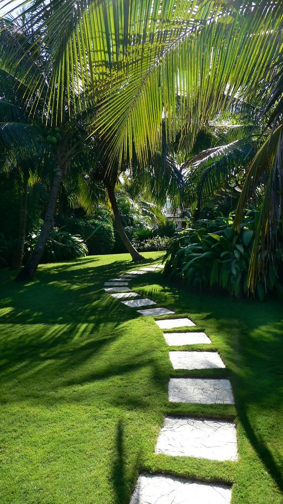 modern architecture - craig reynolds landscape architect - carribbean garden…