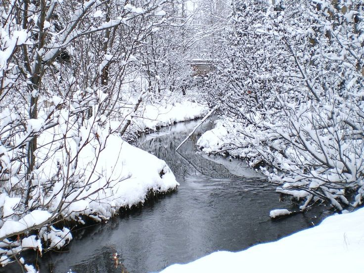 Image result for stream in winter