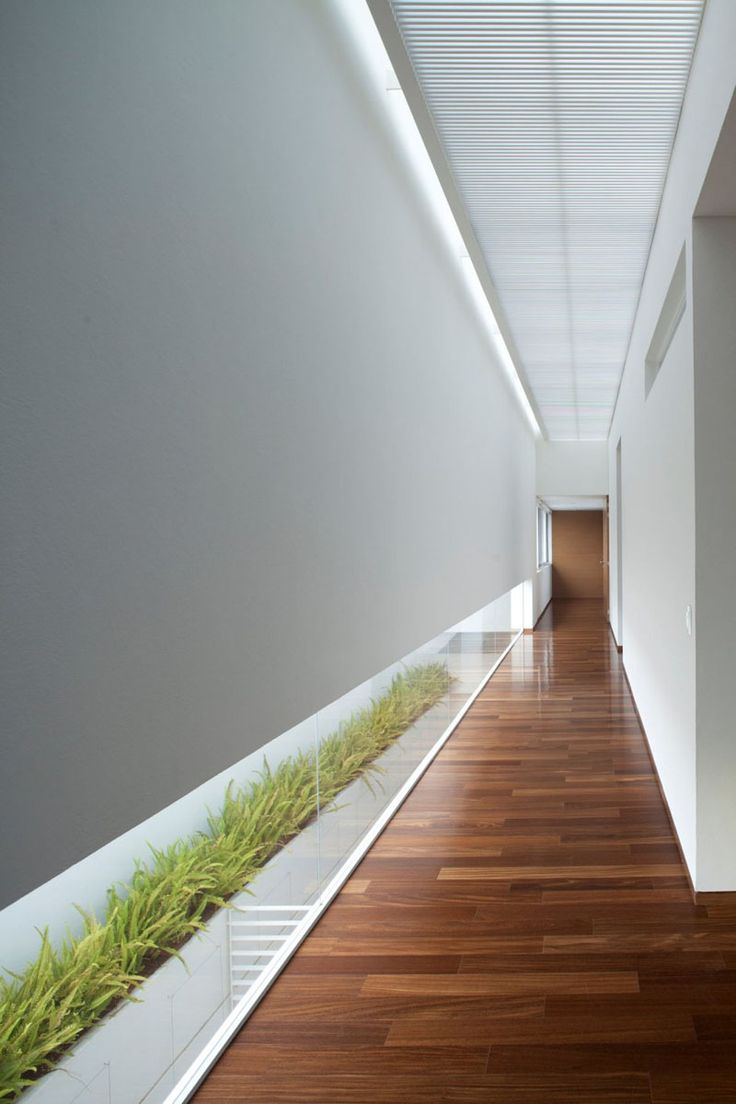The low horizontal window in this white and wood hallway lets light in and allows for views of the plants.