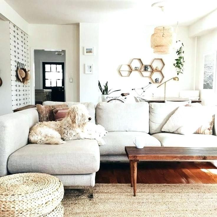What Color Rug With Grey Couch Light Gray Goes A Rugs That Go Couches To Sofa Large Size Of Wit Dreamy Living Room Minimalist Living Room Neutral Living Room