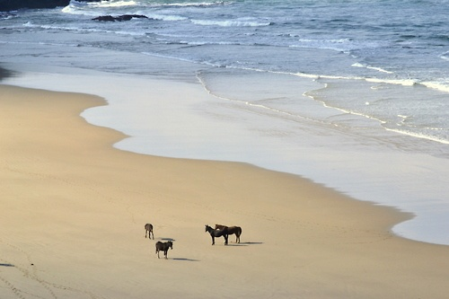 Transkei, South Africa