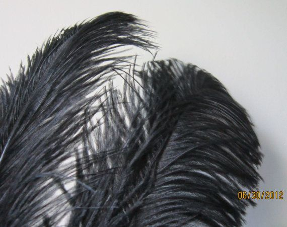Two Black Ostrich Feathers Plumes 912 inches by suppliesfromnadia, $6.00