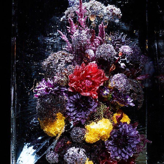Makoto Azuma, Japanese florist who freezes flowers (or lights them on fire)