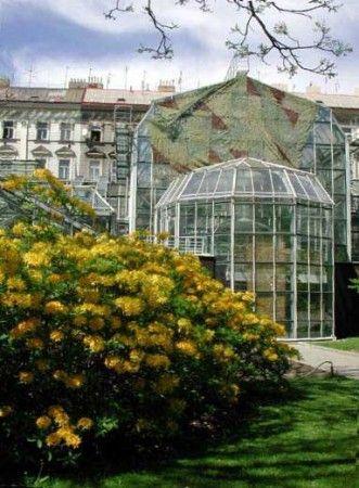 V blízkosti Albertov Rental Apartments se nachází Botanická zahrada přirodovědecké fakulty UK, v nadcházejících dnech se zde otevírá nová výstava exotického ptactva.