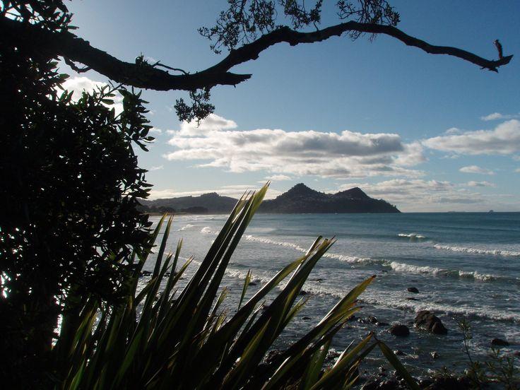 Looking back from Pauanui towards Paku