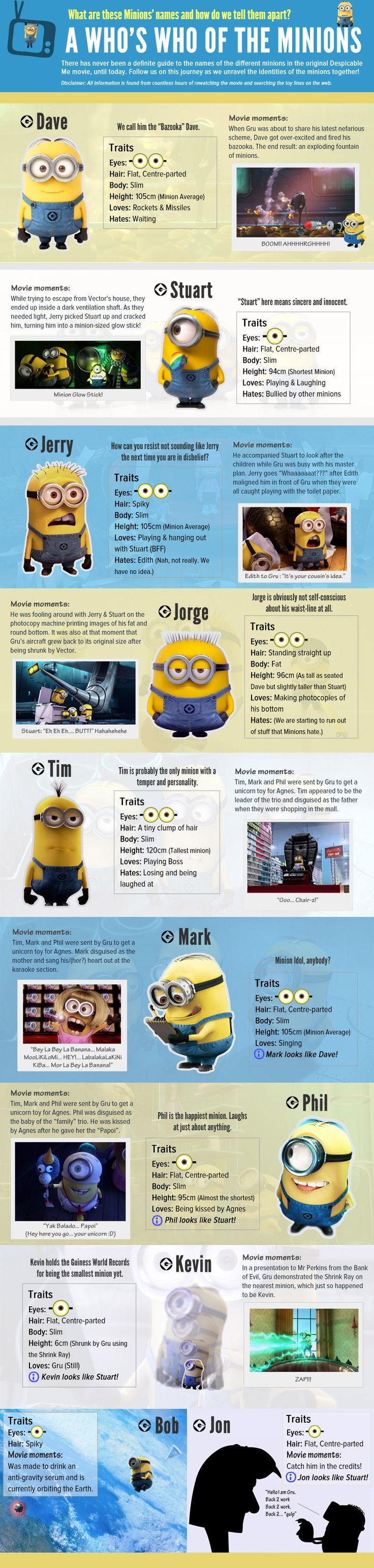 A Complete Introduction To Despicable Me 2 Minions | Infographics