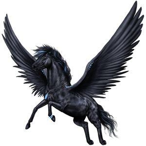 Black Pegasus | Black Pegasus Coats - The New Howrse Photo (32623069) - Fanpop ...