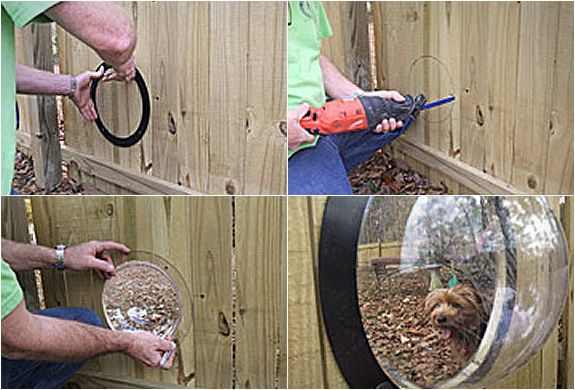 Backyard Ideas For Dogs the backyard dog playground is finished pics Petpeek Window For Your Fence Backyard And Dog