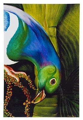 Kereru, Medium Art Block - Robyn Forbes   http://www.shopnewzealand.co.nz/en/cp/Kereru_Print