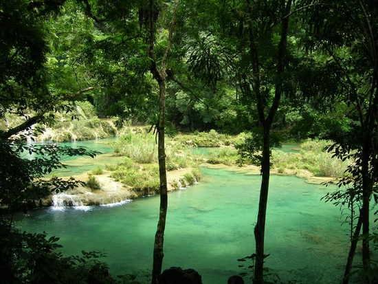 Semuc Champey Natural Water SpringsSemuc Champey, Julietran Guatemala, Travel Photos, Water Spring, Beautiful Guatemala, Free Travel, Guatemala Slideshow, Champey Nature, Nature Water
