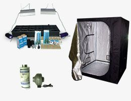 The 8 Man Tent Nothern Lights Grow Box/Kit company