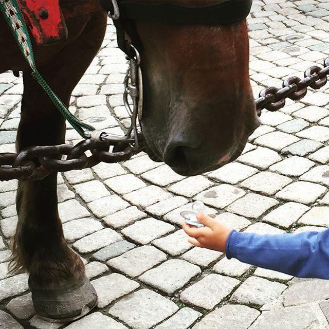 #Megeve #summer2016 #montblanc #montagna #photooftheday #picoftheday #ciuccio #cavallo #horse #instababy #instamood #fashion #montagna #igers #cavallo #goodbye #cut#happyfamily #familyfirst famil