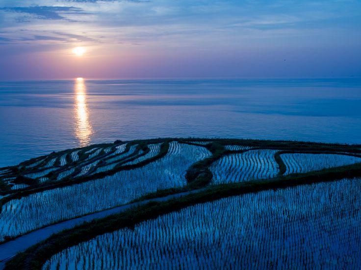 #Senmaida #RiceTerrace  Taken with  Camera: #OLYMPUS OM-D E-M5 http://kakaku.com/item/K0000340278/  Lens: #MZUIKO #DIGITAL ED 12-40mm F2.8 PRO http://kakaku.com/item/K0000575072/  #buyonline #japanesetech