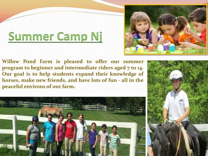 When seeking out information on the various Summer Camps In NJ near your home and in other states the easiest way to lean the bulk of the information you want to know is to ask for a copy of their summer camp programs. The whole reason for the Summer Camps In NJ is to send the child somewhere that they will have a great time and learn and grow as a person. Browse this site http://www.willowpondfarmnj.com/Camp-Registration.html for more information on Summer Camps In NJ.
