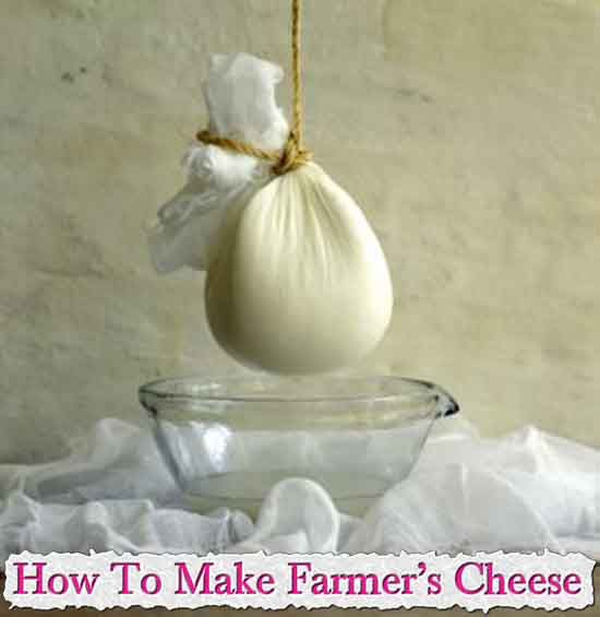How To Make Farmer's Cheese,Farmer's cheese, is a type of simple, soft white cheese traditionally made on farms in Europe and the Middle East