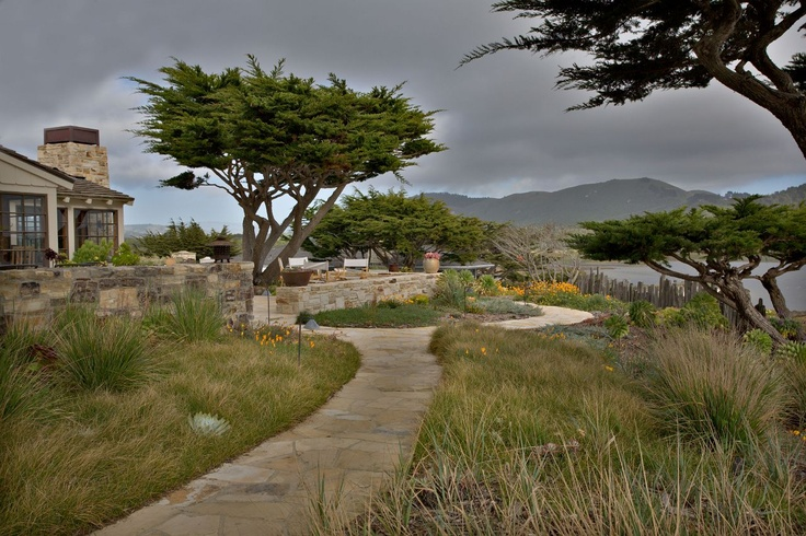 rivermouth residence. Natural-looking landscaping with native grasses, great walkway, sculptural native trees.  Bernard Trainor