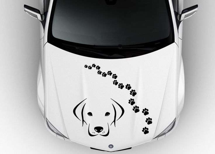 Best CAR SIDE VINYL DECAL GRAPHICS Images On Pinterest Car - Decal graphics on cars