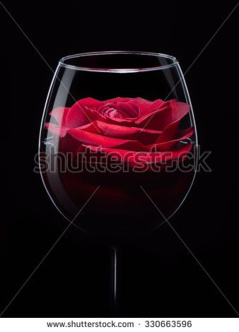 Red rose in wineglass with wine, close up isolated on black studio shot