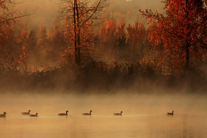 They were seven by Andre Villeneuve