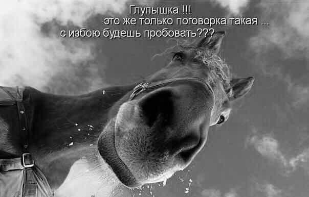 Фрэндлента amberli_la