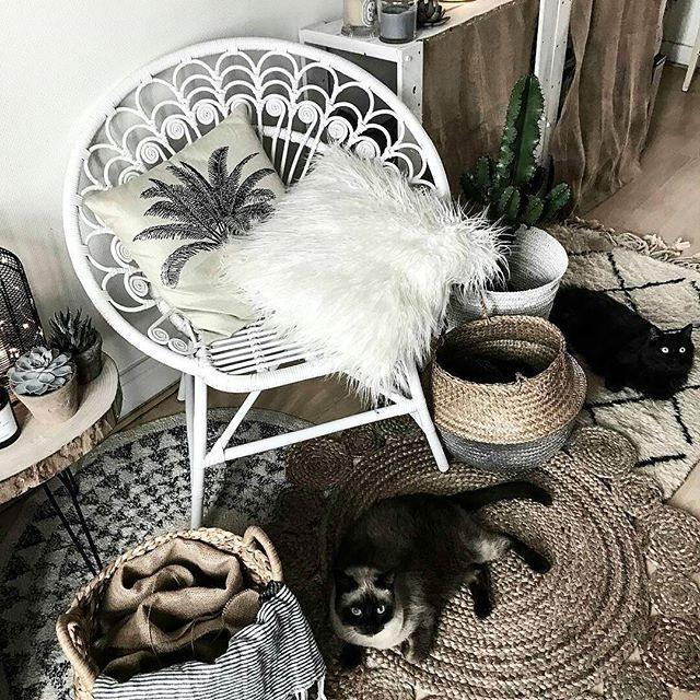 Casa dolce casa! Un morbido rientro con i nostri animali e un confortevole tappeto. Scoprite i nostri modelli di tappeti berberi provenienti direttamente dal Marocco qui: http://www.sukhi.it/marocco.html