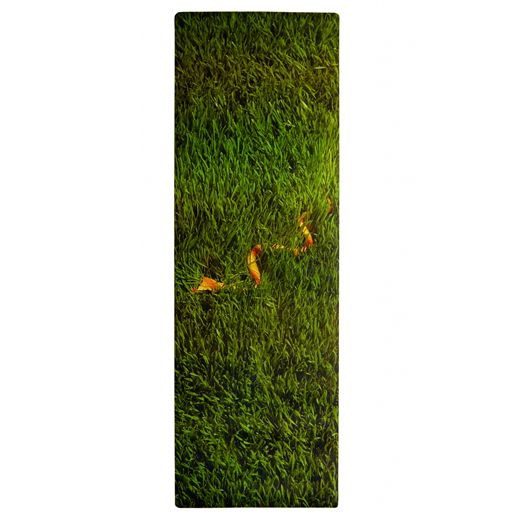Друзья, у нас новинки! Знаменитые каучуковые коврики для йоги от легендарных фирм Manduka и Plank.  А также новые чехлы для ковриков, пропсы и гамаки для йоги. Доставка по Москве бесплатно! http://culttela.ru/products/category/584002