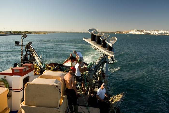 Pesca da sardinha ao largo de Monte Gordo
