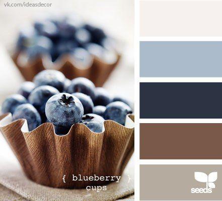 colours design