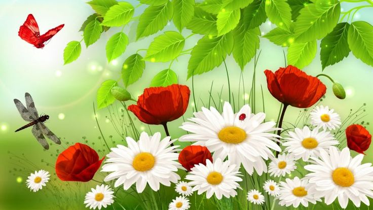 Images Of Spring Custom HD Wallpapers Collection On