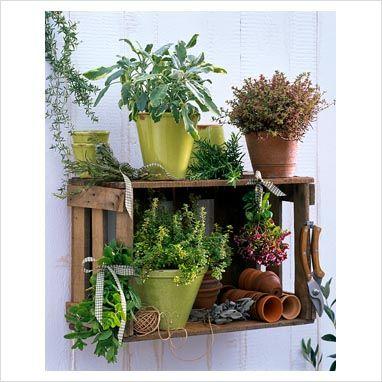 reciclar caja de madera de frutas como estantería para poner plantas