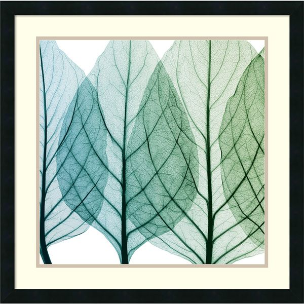 Steven N. Meyers 'Celosia Leaves I' Framed Art Print 26 x 26-inch - Overstock™ Shopping - Top Rated Prints
