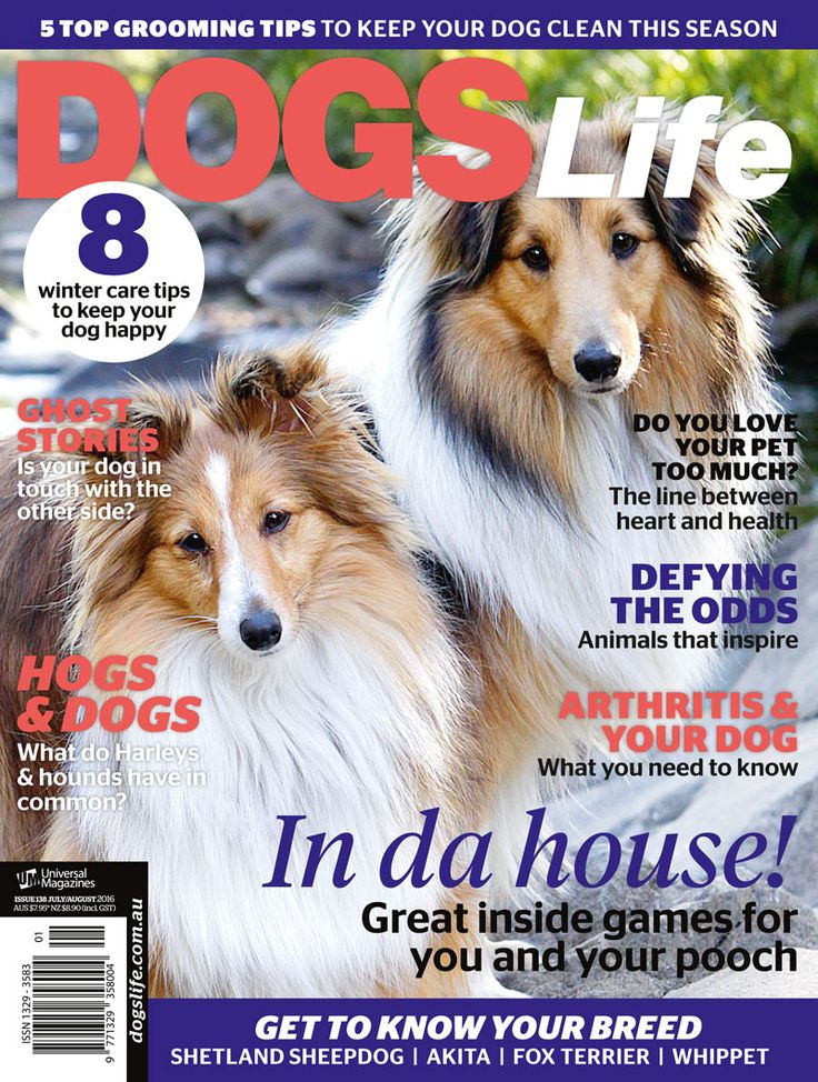 Get your paws on the latest issue of #dogslifemag now!